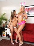 Two horny lesbian bunnies play with each others perky and delicious breasts